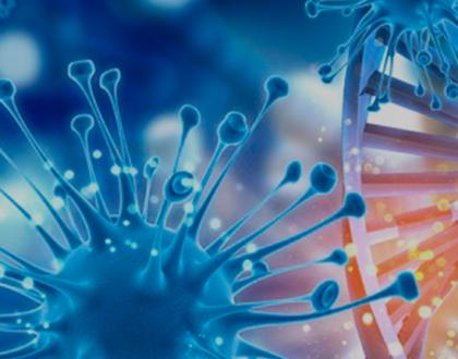 Antimicrobianos - Autoadministrado